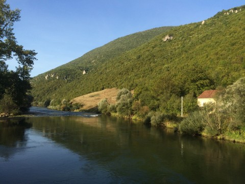 The river Vrbas
