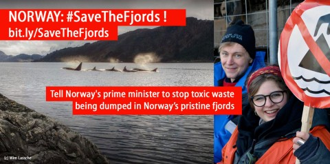 Activists blockade mine site over threat to pristine Førde fjord, Norway