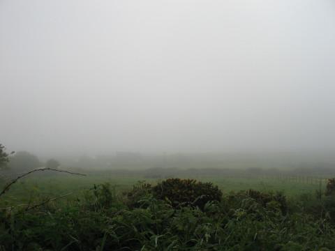 Foggy Wales