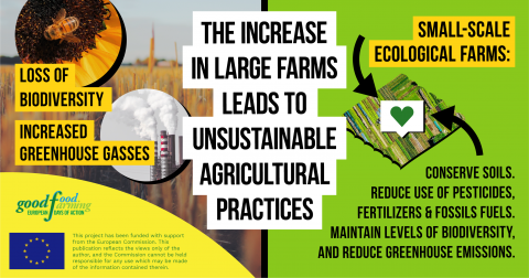 The increase in large farms leads to unsustainable agricultural practices