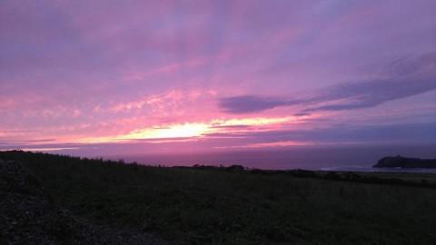 Agri-activism - solstice sunset