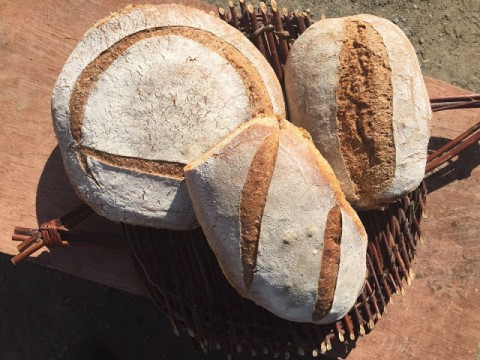 Bread-baking in Wales