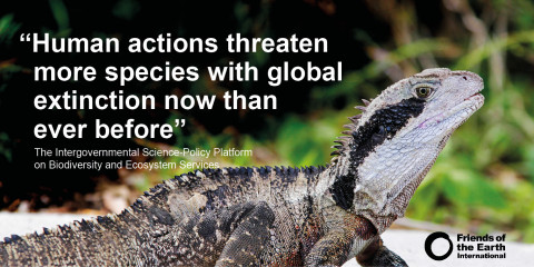 More species are threatened with global extinction than ever before