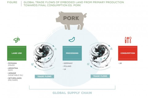 Trade and process flows for pork