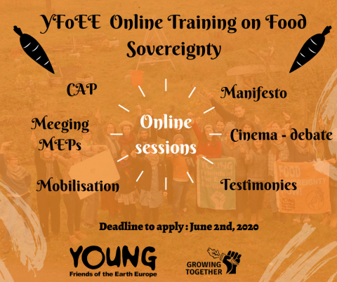 YFoEE Growing Together Online training programme