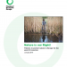 Nature is our right! Policies to protect nature in Europe for the good of everyone (Jan 2016)